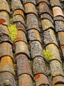 חומרי איטום לגג מרוצף